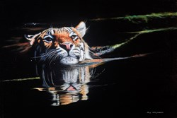 Tiger Swimming by Pip McGarry - Original Painting on Stretched Canvas sized 30x20 inches. Available from Whitewall Galleries